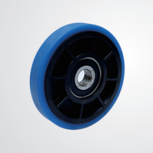 Wheels (φ100)